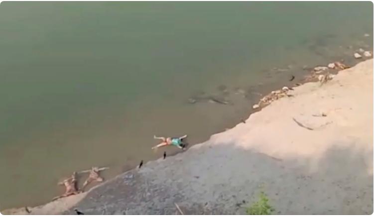 Los estragos del coronavirus en la India: decenas de cadáveres flotan en el Ganges